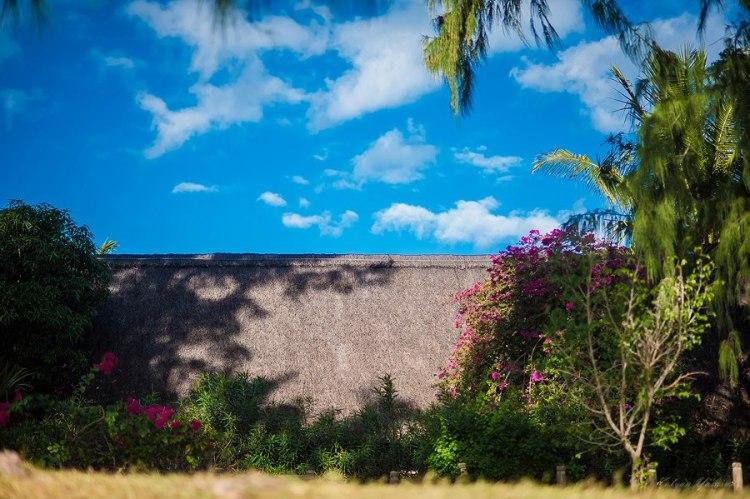 Break the walls if you must, but watch the sun rise. www.kalyanyasaswi.com